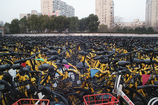 ofo: China's Bike-Share Giant Faces Bumpy Roads Ahead